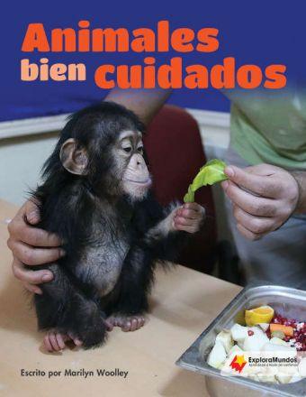 Animales bien cuidados