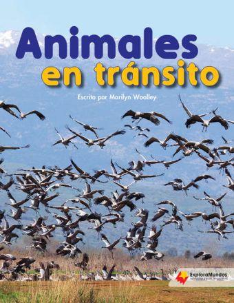 Animales en tránsito