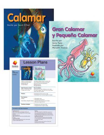 Calamar / Gran Calamar y Pequeño Calamar