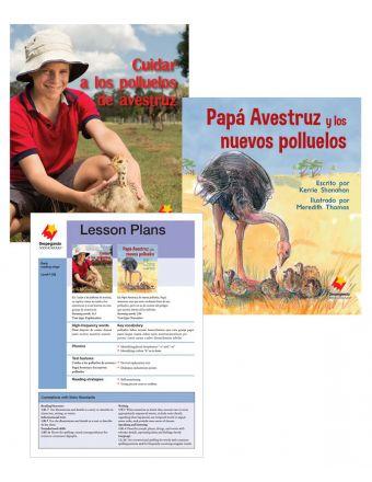 Cuidar a los polluelos de avestruz / Papá Avestruz y los nuevos polluelos