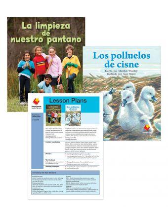 La limpieza de nuestro pantano / Los polluelos de cisne