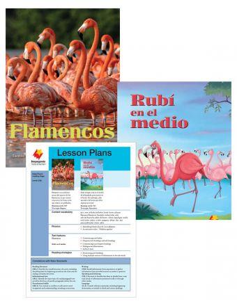 Flamencos / Rubí en el medio