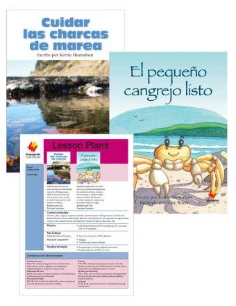 Cuidar las charcas de marea / El pequeño cangrejo listo