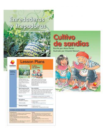 Enredaderas y trepadores / Cultivo de sandías
