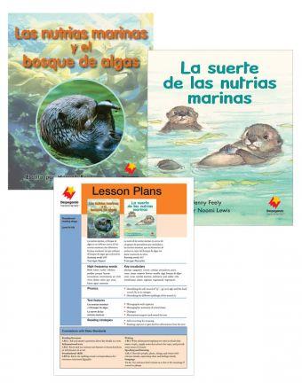 Las nutrias marinas y el bosque de algas / La suerte de las nutrias marinas