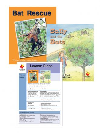 Bat Rescue / Sally and the Bats