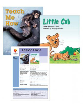 Teach Me How / Little Cub