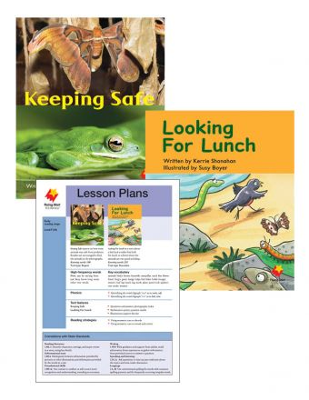 Keeping Safe / Looking for Lunch