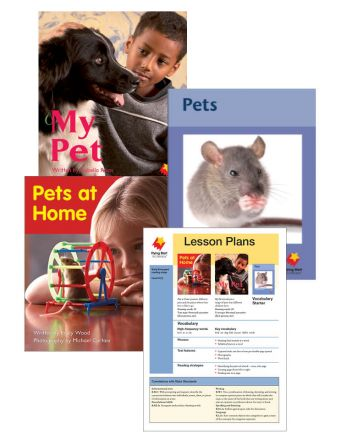 Pets at Home / My Pet / Pets Vocabulary Starter