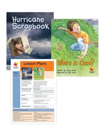 Hurricane Scrapbook / Where Is Coco?