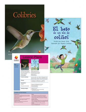 Colibríes / El beso de un ala de colibrí