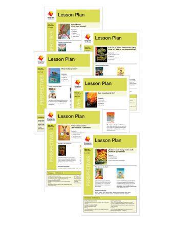 Fluent Plus Perspectivas Lesson Plan Add-On Set