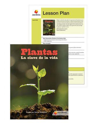 Plantas: La clave de la vida