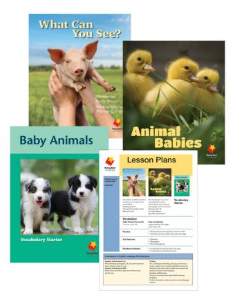 Animal Babies / What Can You See? / Baby Animals Vocabulary Starter