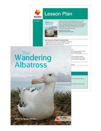 The Wandering Albatross