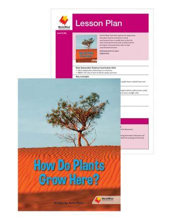 How Do Plants Grow Here?