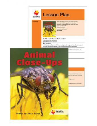 Animal Closeups