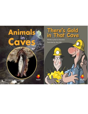 Animals in Caves / There's Gold in That Cave