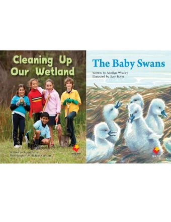Cleaning Up Our Wetland / The Baby Swans