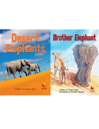 Desert Elephants / Brother Elephant