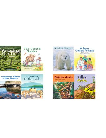 Fluent Classroom Library Add-On Set