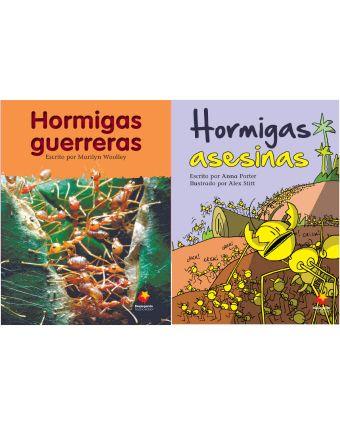 Hormigas guerreras / Hormigas asesinas