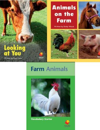 Looking at You / Animals on the Farm / Farm Animals Vocabulary Starter