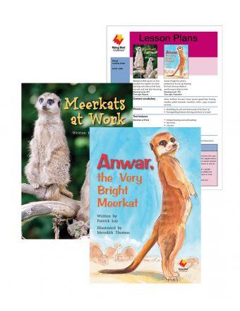 Meerkats at Work / Anwar, the Very Bright Meerkat