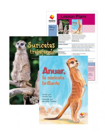Suricatas trabajando / Anuar, la suricata brillante