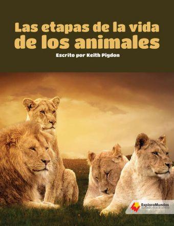 Las etapas de la vida de los animales