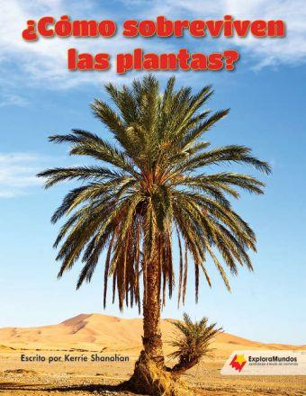 ¿Cómo sobreviven las plantas?