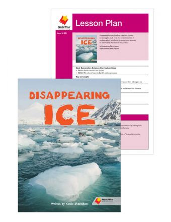 Disappearing Ice