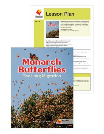 Monarch Butterflies: The Long Migration