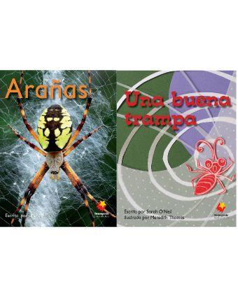 Arañas / Una buena trampa