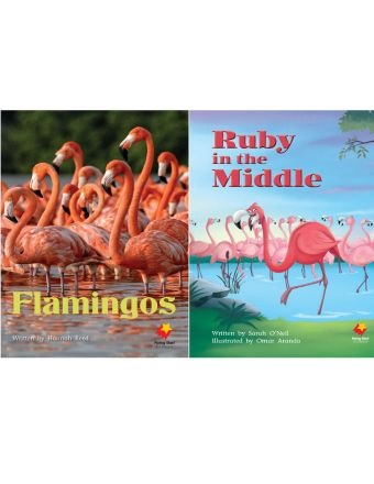 Flamingos / Ruby in the Middle
