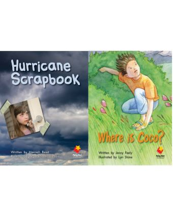 Hurricane Scrapbook / Where Is Coco?