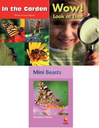 In the Garden / Wow! Look at That / Mini Beasts Vocabulary Starter
