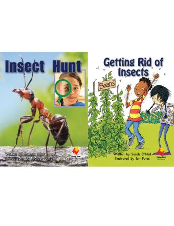 Insect Hunt / Getting Rid of Insects