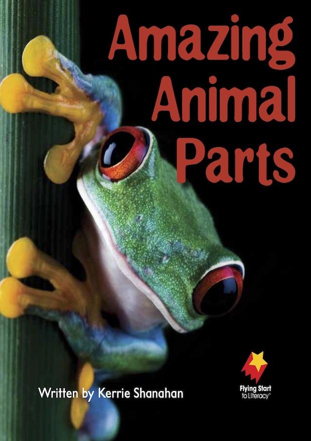 Amazing Animal Parts
