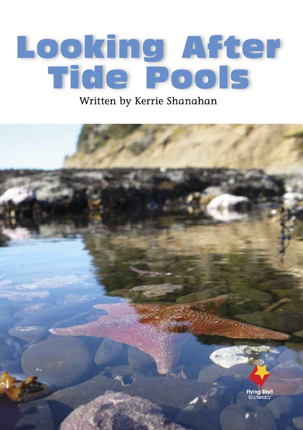 Looking After Tide Pools