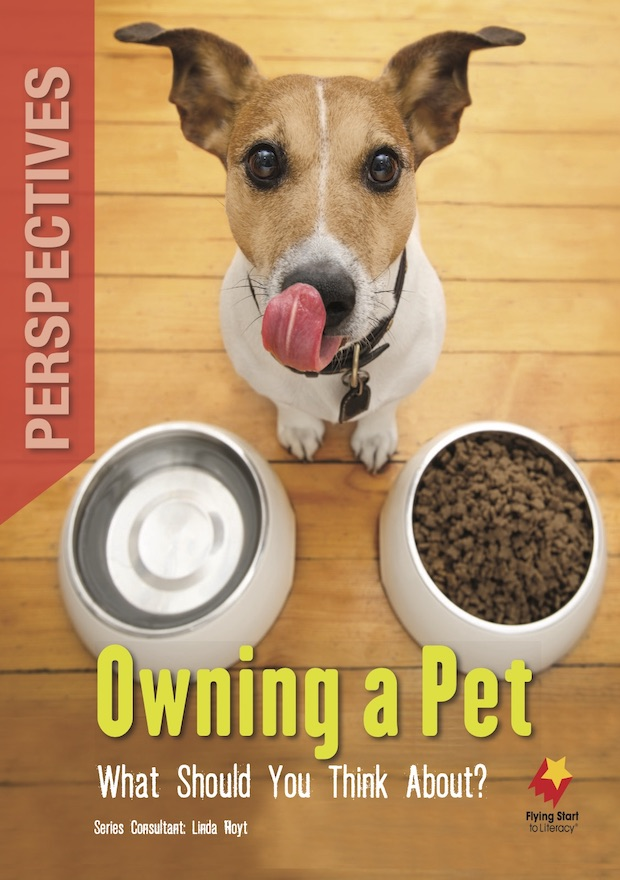 Perspectives Owning a Pet: What Should you Think About?