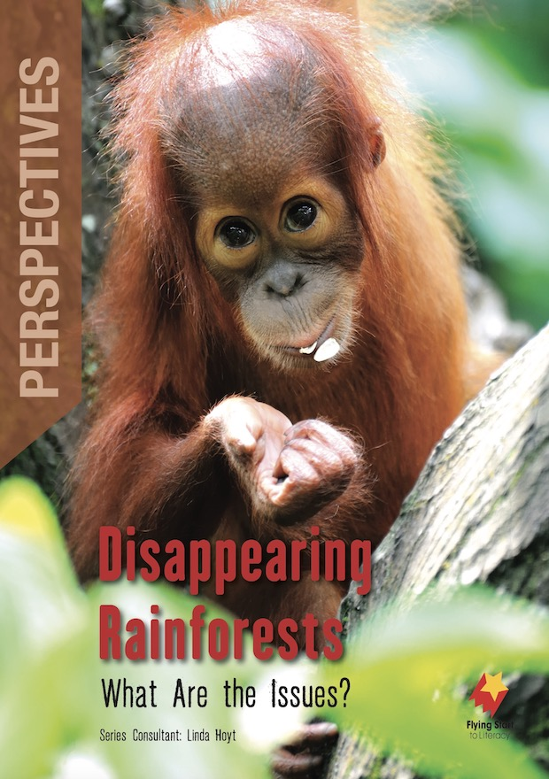 Perspectives Disappearing Rainforests: What Are the Issues?