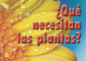 ¿Qué necesitan las plantas?
