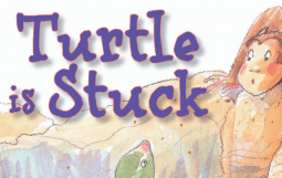 Turtle is Stuck